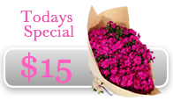 Todays flower special - Sweet William